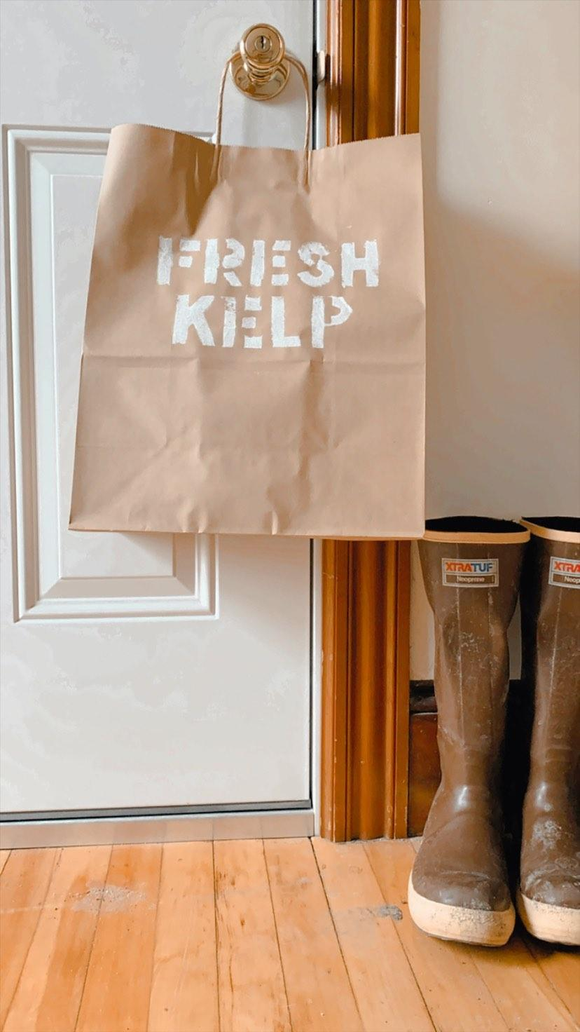 Get Kelp