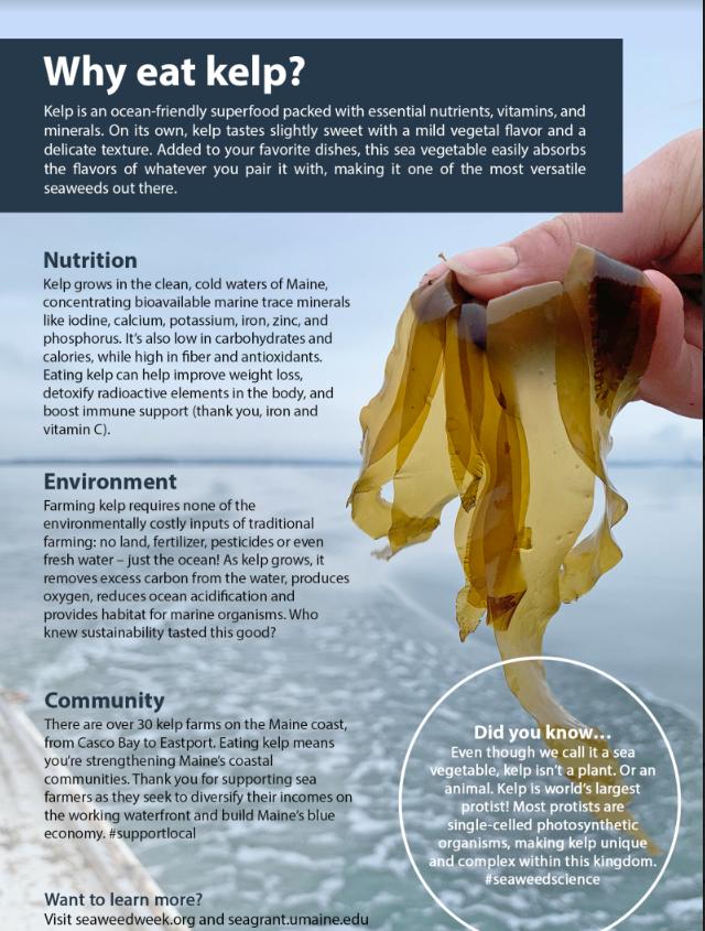 Kelp General Info Card 1